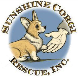 Sunshine Corgi Rescue